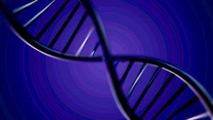 Иркутская генетическая экспертиза